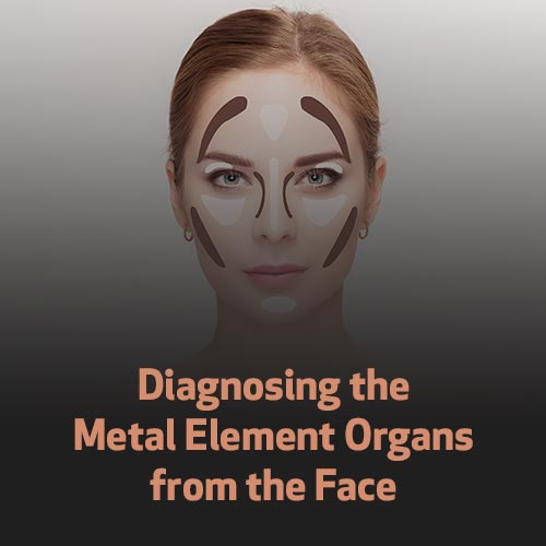 Diagnosing the Metal Element Organs from the Face