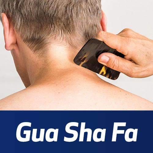 Gua Sha Fa