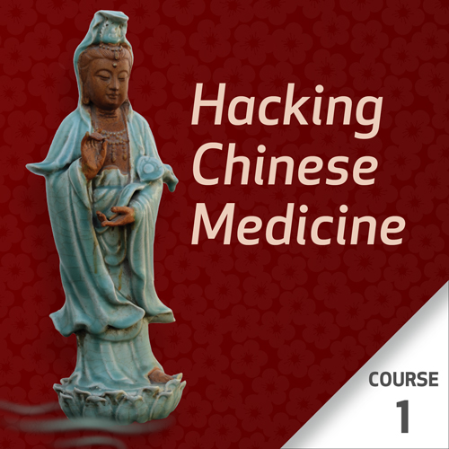 Hacking Chinese Medicine - Course 1