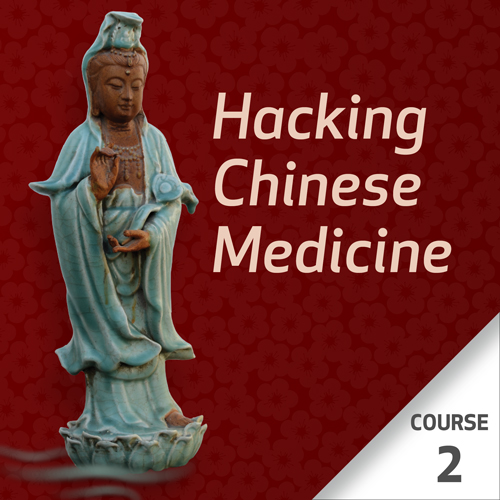 Hacking Chinese Medicine - Course 2