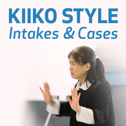 Kiiko Style Intakes and Cases