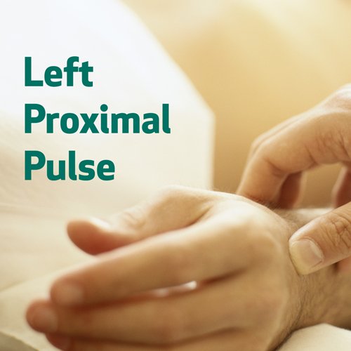Left Proximal Pulse