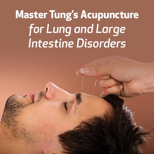 Master Tung's Acupuncture (MTA) for Lung and Large Intestine Disorders