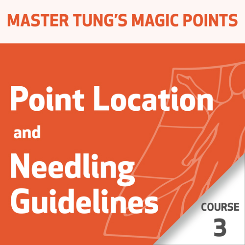 Master Tung's Magic Points: Point Location and Needling Guidelines Series - Course 3