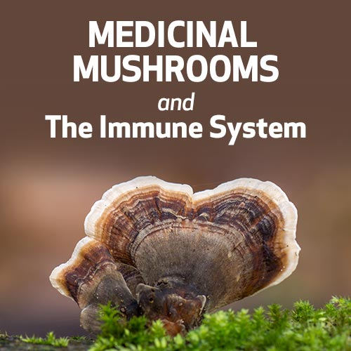 Medicinal Mushrooms and the Immune System