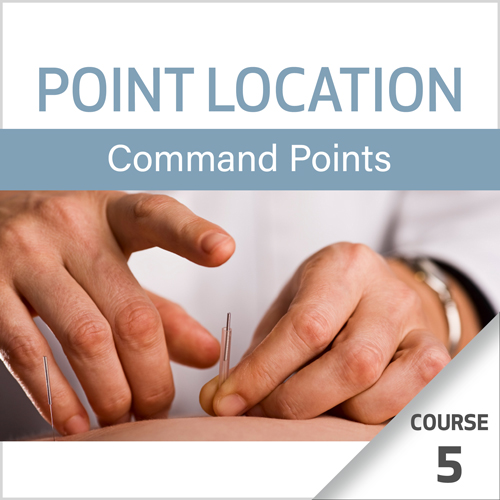 Point Location Series: Command Points - Course 5