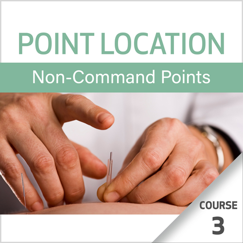 Point Location Series: Non-Command Points - Course 3