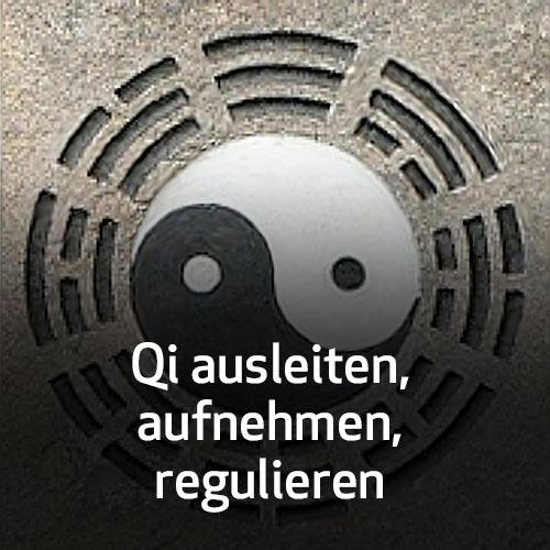 Qi ausleiten, aufnehmen, regulieren