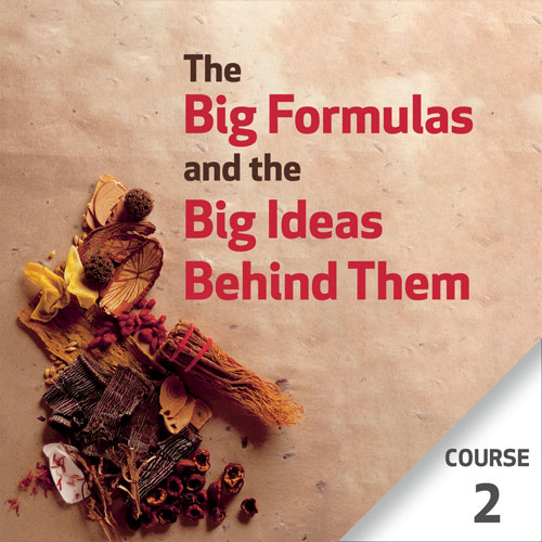The Big Formulas and the Big Ideas Behind Them - Course 2