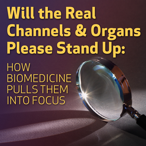 Will the Real Channels and Organs Please Stand Up